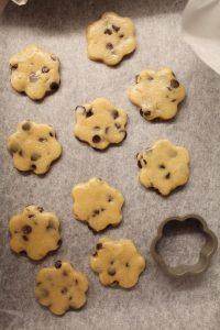 preparazione dei biscotti simil misura privolat