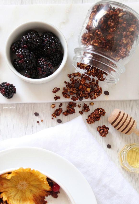 Granola al cacao e gocce di cioccolato homemade