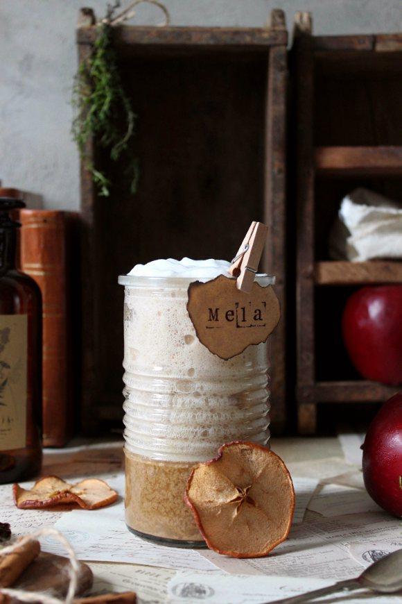 Latte speziato alla mela vegan