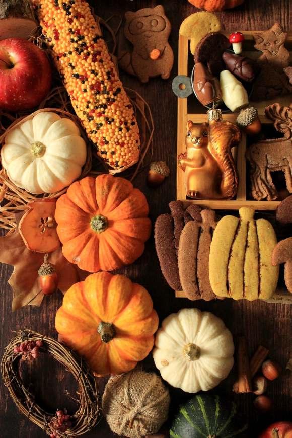 Autumn Cookie box: scatola di biscotti autunnale zucca castagne cacao senza uova senza burro